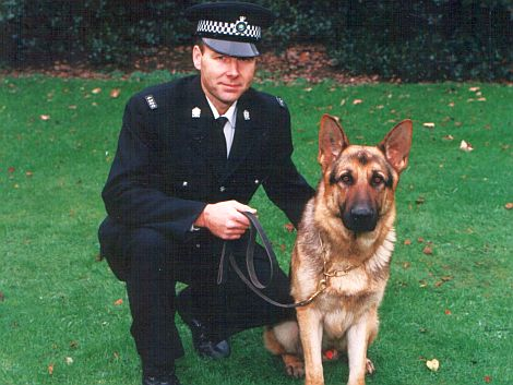 Personal Protection Dogs - www.countrysidekennels.co.uk