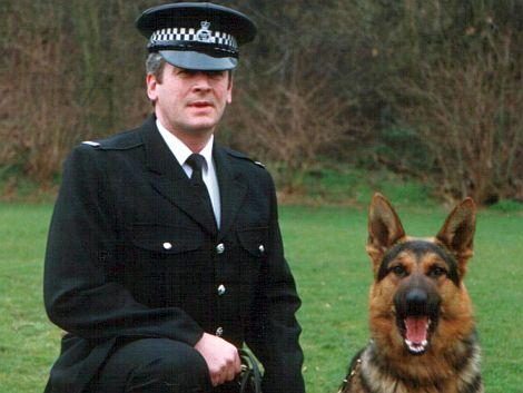 House Dogs - www.countrysidekennels.co.uk